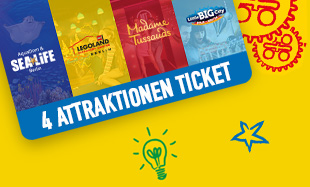 LDC 4 Attraktionen Ticket 310X187