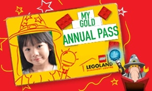 Gold Annual Pass (1)